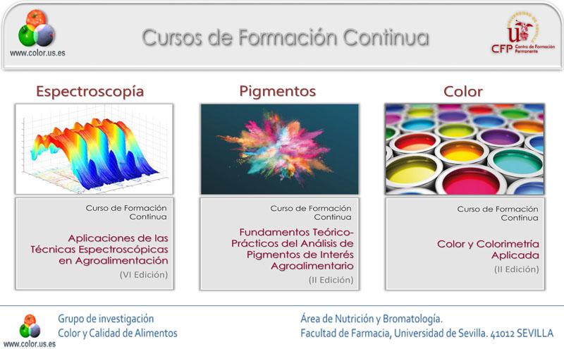 Cursos de formación continua en espectroscopía, pigmentos  y  color